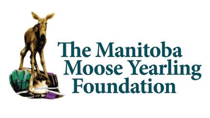 Manitoba Moose Yearling Foundation Is Founded